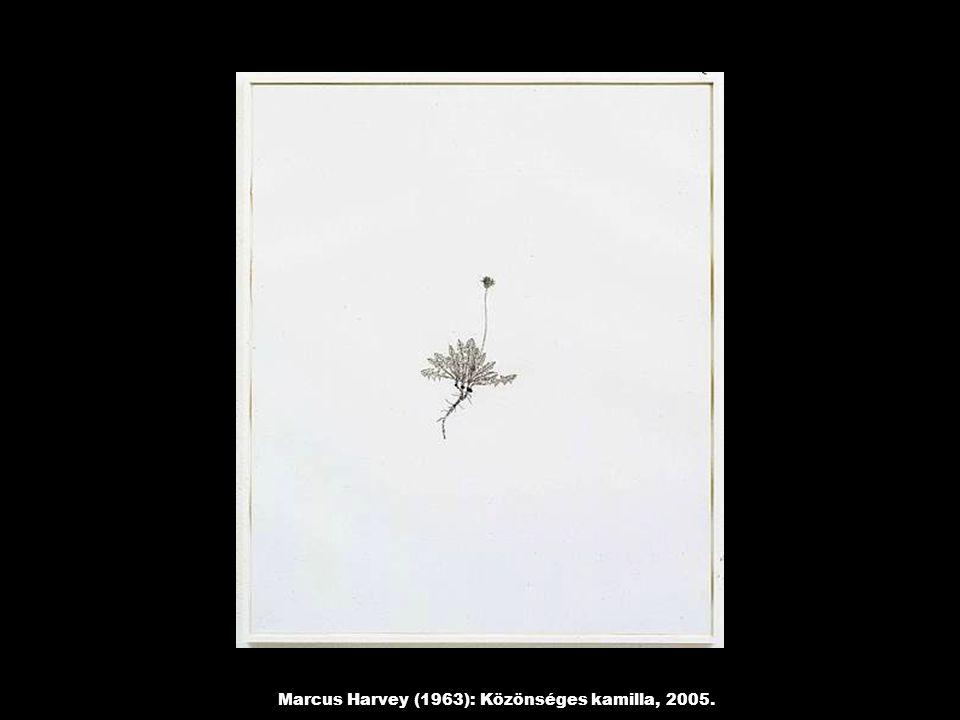 Marcus Harvey (1963): Közönséges kamilla, 2005.