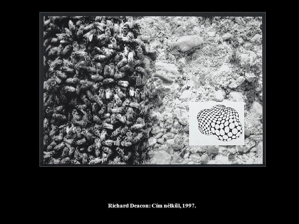 Richard Deacon: Cím nélkül, 1997.