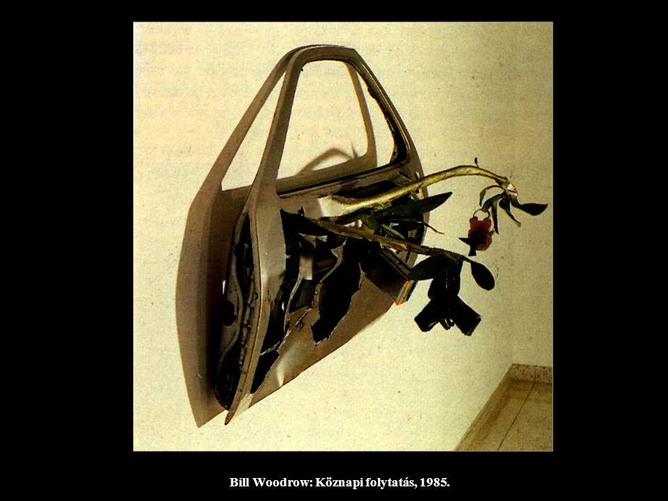 Bill Woodrow: Köznapi folytatás, 1985.