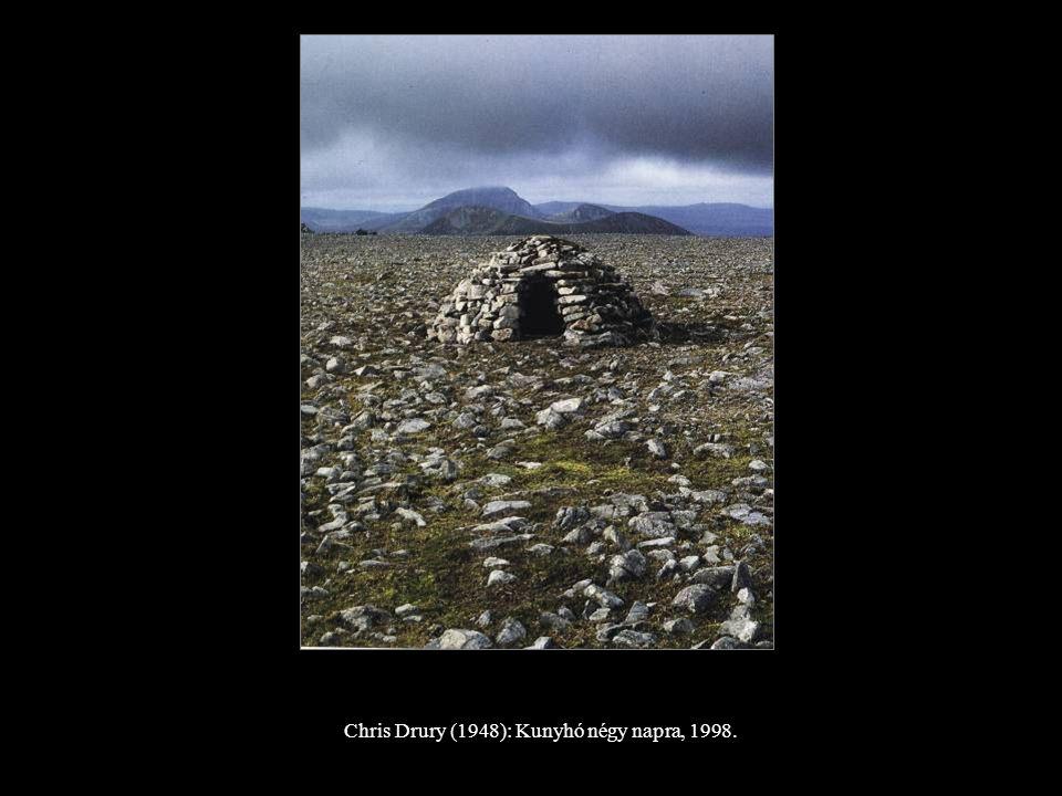 Chris Drury (1948): Kunyhó négy napra, 1998.