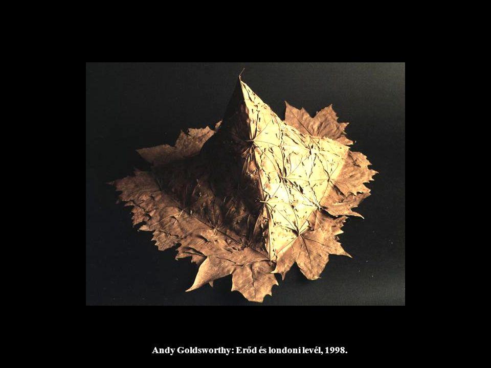 Andy Goldsworthy: Erőd és londoni levél, 1998.