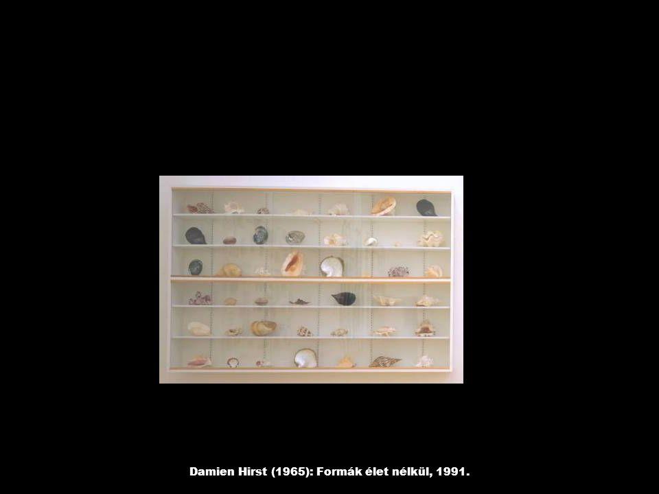 Damien Hirst (1965): Formák élet nélkül, 1991.