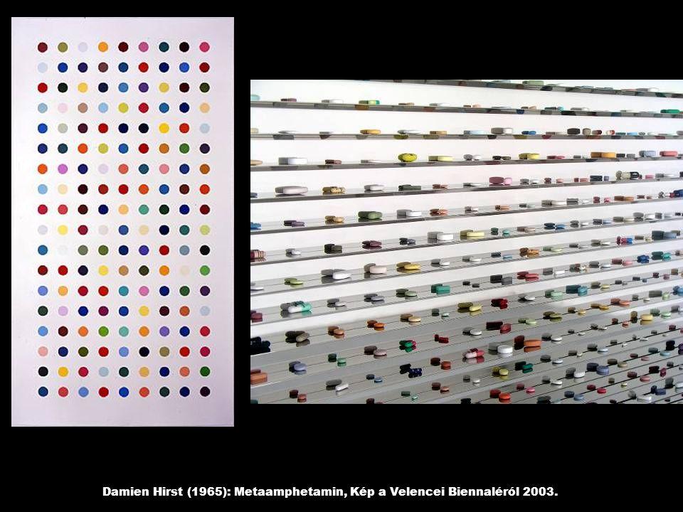 Damien Hirst (1965): Metaamphetamin, Kép a Velencei Biennaléról 2003.