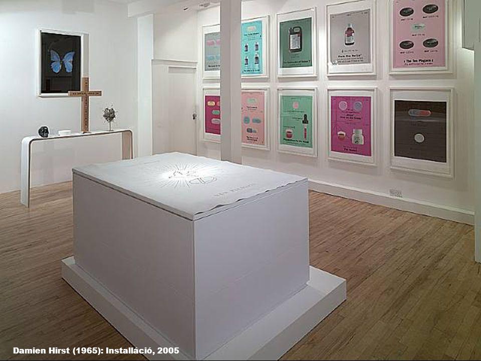 Damien Hirst (1965): Installáció, 2005