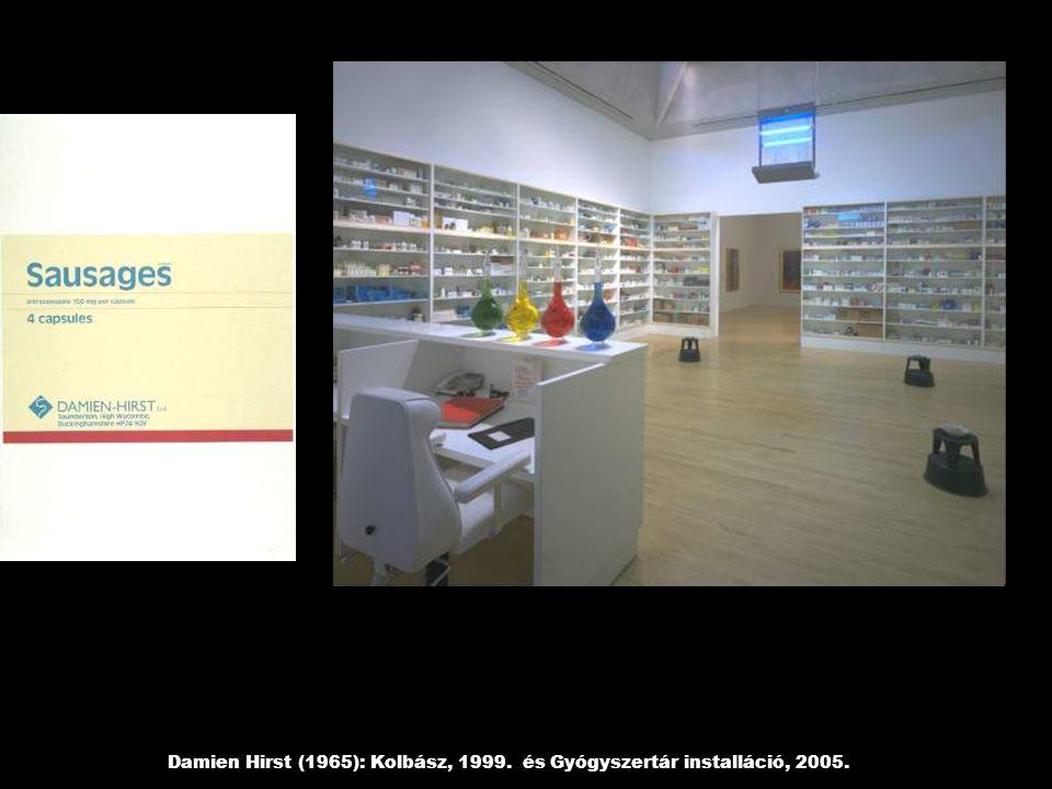 Damien Hirst (1965): Kolbász, 1999. és Gyógyszertár installáció, 2005.