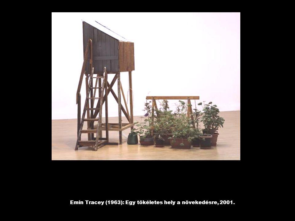Emin Tracey (1963): Egy tökéletes hely a növekedésre, 2001.