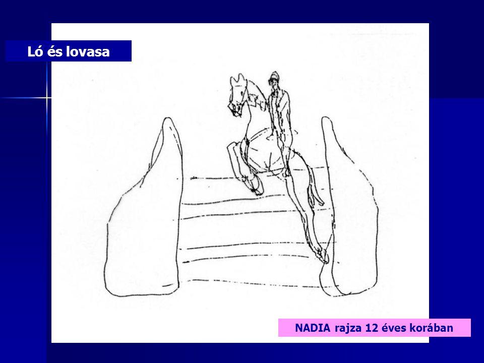 Ló és lovasa NADIA rajza 12 éves korában