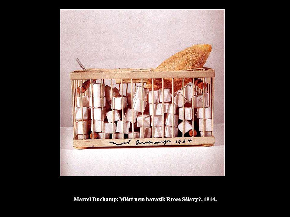 Marcel Duchamp: Miért nem havazik Rrose Sélavy?, 1914.