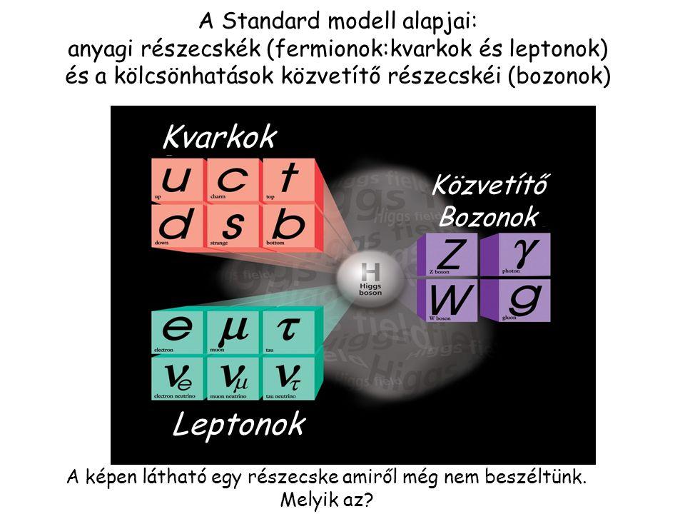 [ Spin = ½ (Fermionok)] , 8 gluon,W +,W -,Z 0 [Spin = 1 (Bozonok)] A Standard modell részecskéi: anyagi részecskék (kvarkok / leptonok) és a kölcsönh