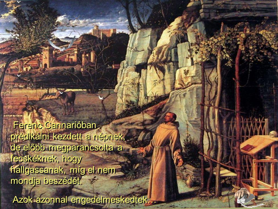 """""""Gyere ide, farkas testvér! - mondta Ferenc. A farkas engedelmeskedett."""