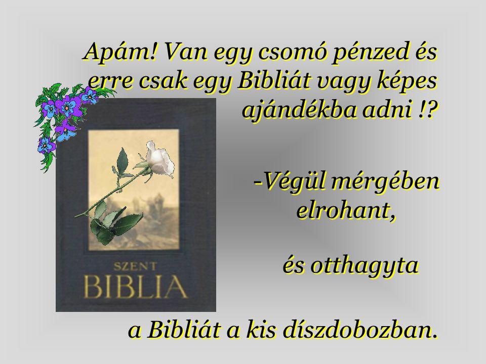 Apám.Van egy csomó pénzed és erre csak egy Bibliát vagy képes ajándékba adni !.