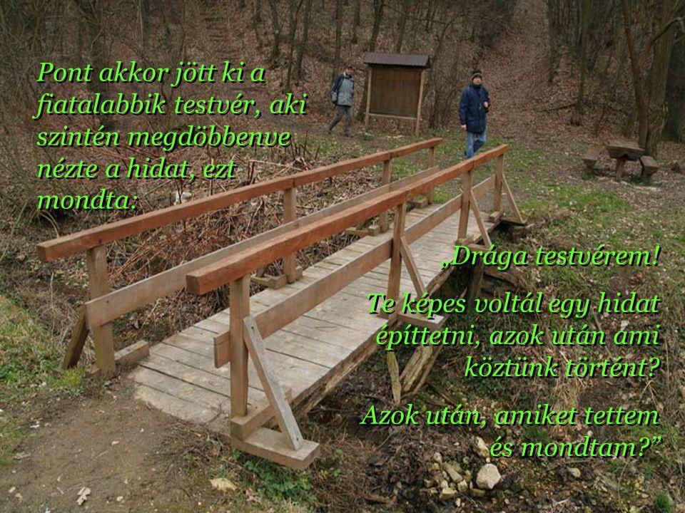 Estefelé, amikor visszajött az idősebb testvér megdöbbenve látta, hogy a telek határában, a kis völgyben nem egy kerítés, Estefelé, amikor visszajött az idősebb testvér megdöbbenve látta, hogy a telek határában, a kis völgyben nem egy kerítés, Hanem ellenkezőleg egy híd áll, mely összeköti az ő és testvére telkét.