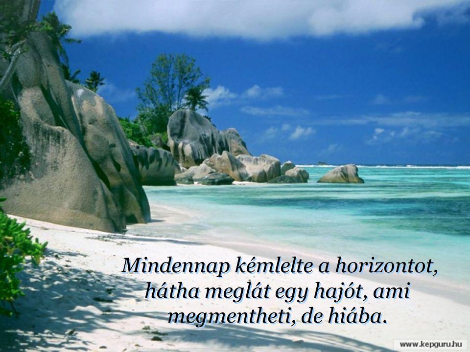 Őt a víz egy lakatlan sziget partjára vetette. Azon imádkozott nap mint nap, hogy jöjjön és mentse meg valaki.