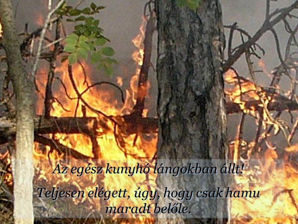 Az egész kunyhó lángokban állt.Teljesen elégett, úgy, hogy csak hamu maradt belőle.