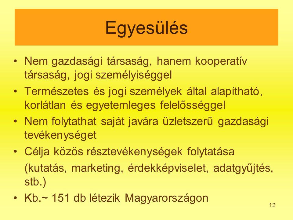 12 Egyesülés Nem gazdasági társaság, hanem kooperatív társaság, jogi személyiséggel Természetes és jogi személyek által alapítható, korlátlan és egyetemleges felelősséggel Nem folytathat saját javára üzletszerű gazdasági tevékenységet Célja közös résztevékenységek folytatása (kutatás, marketing, érdekképviselet, adatgyűjtés, stb.) Kb.~ 151 db létezik Magyarországon