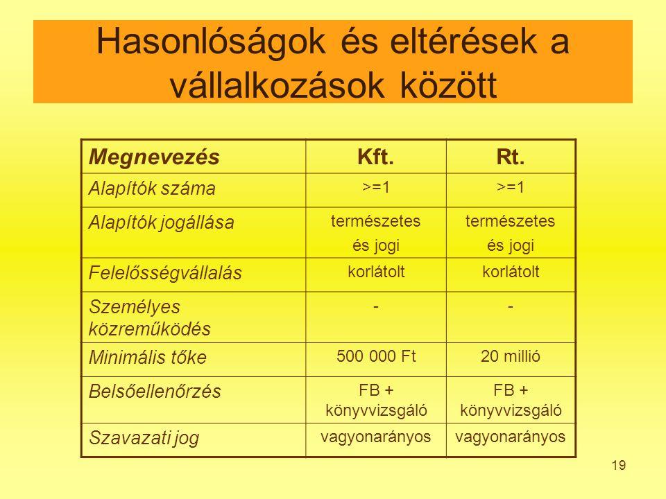 19 Hasonlóságok és eltérések a vállalkozások között MegnevezésKft.Rt.