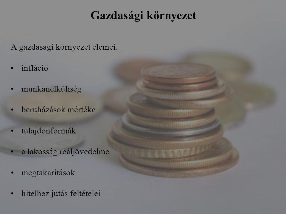 Gazdasági környezet A gazdasági környezet elemei: infláció munkanélküliség beruházások mértéke tulajdonformák a lakosság reáljövedelme megtakarítások