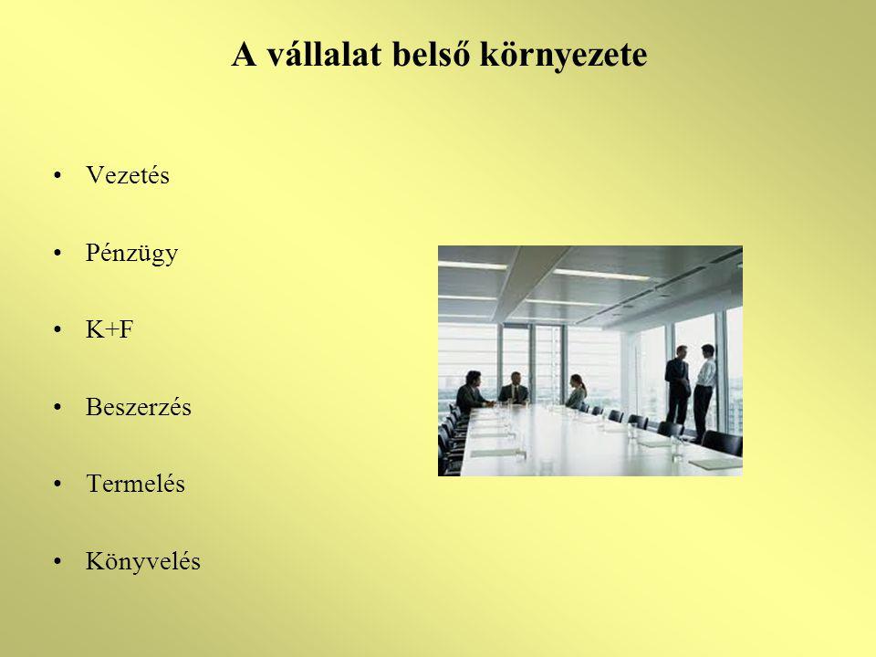 A vállalat belső környezete Vezetés Pénzügy K+F Beszerzés Termelés Könyvelés