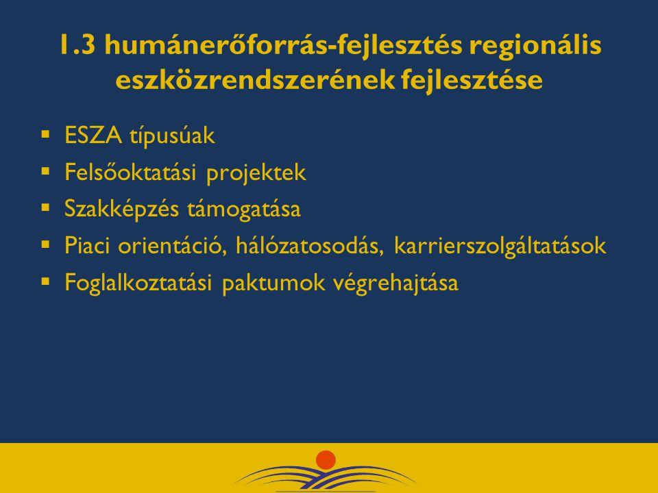 1.3 humánerőforrás-fejlesztés regionális eszközrendszerének fejlesztése  ESZA típusúak  Felsőoktatási projektek  Szakképzés támogatása  Piaci orientáció, hálózatosodás, karrierszolgáltatások  Foglalkoztatási paktumok végrehajtása
