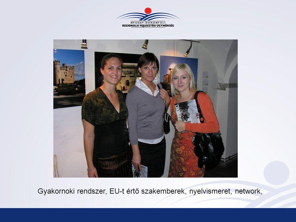Gyakornoki rendszer, EU-t értő szakemberek, nyelvismeret, network,
