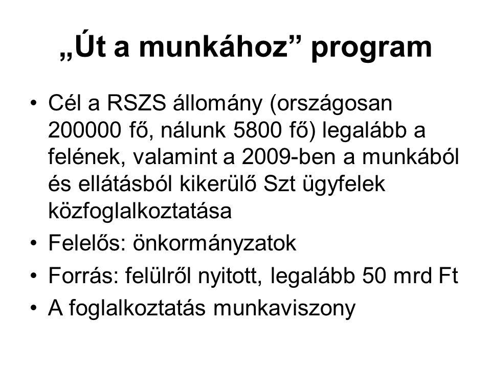 """""""Út a munkához program Cél a RSZS állomány (országosan 200000 fő, nálunk 5800 fő) legalább a felének, valamint a 2009-ben a munkából és ellátásból kikerülő Szt ügyfelek közfoglalkoztatása Felelős: önkormányzatok Forrás: felülről nyitott, legalább 50 mrd Ft A foglalkoztatás munkaviszony"""
