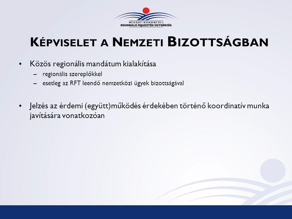 K ÉPVISELET A N EMZETI B IZOTTSÁGBAN Közös regionális mandátum kialakítása –regionális szereplőkkel –esetleg az RFT leendő nemzetközi ügyek bizottságával Jelzés az érdemi (együtt)működés érdekében történő koordinatív munka javítására vonatkozóan