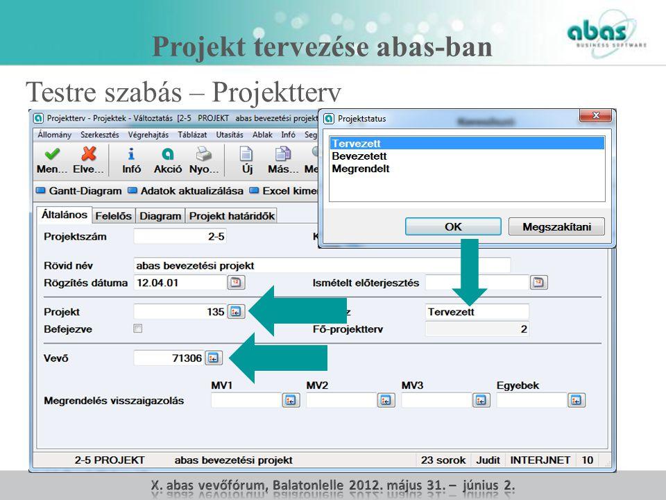 Projekt tervezése abas-ban Testre szabás – Projektterv