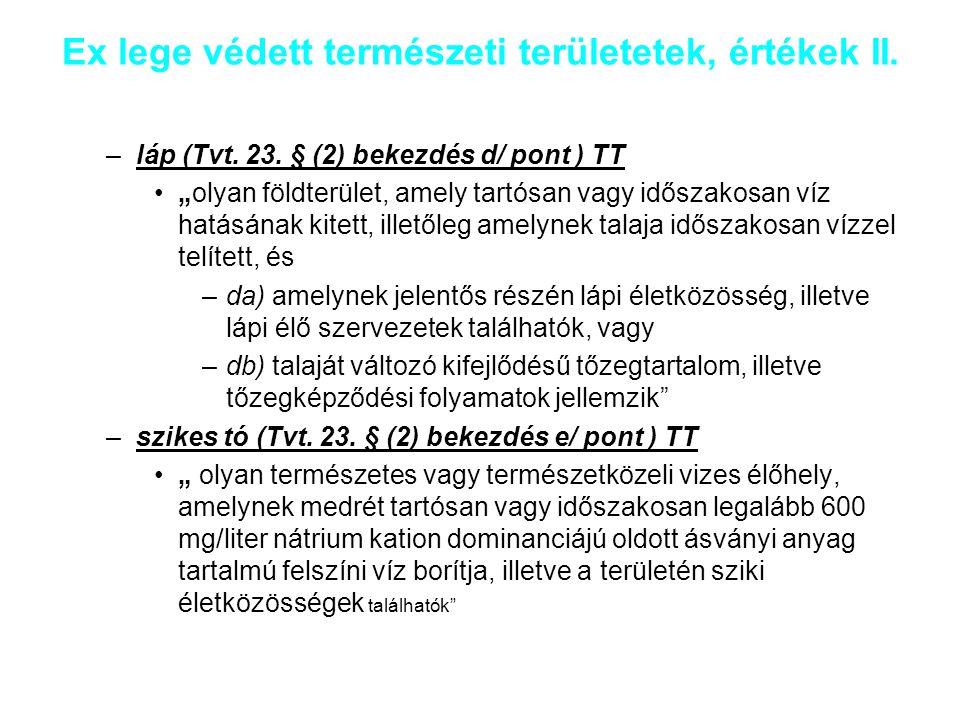 """Ex lege védett természeti területetek, értékek I. Területek: –földvár (Tvt. 23. § (2) bekezdés g/ pont ) TE """"olyan védelmi céllal létesített vonalas v"""