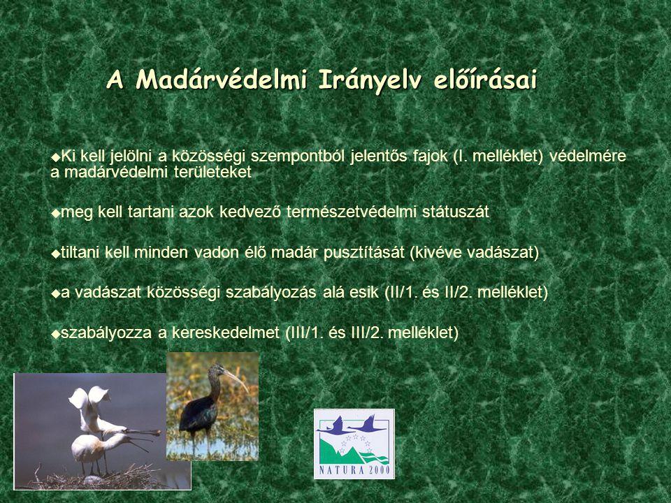 A Madárvédelmi Irányelv előírásai  Ki kell jelölni a közösségi szempontból jelentős fajok (I.