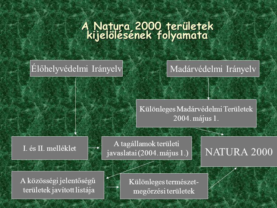 A Natura 2000 területek kijelölésének folyamata Madárvédelmi Irányelv Élőhelyvédelmi Irányelv Különleges Madárvédelmi Területek 2004.