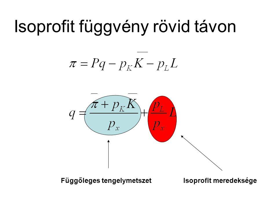 Isoprofit függvény rövid távon Függőleges tengelymetszetIsoprofit meredeksége
