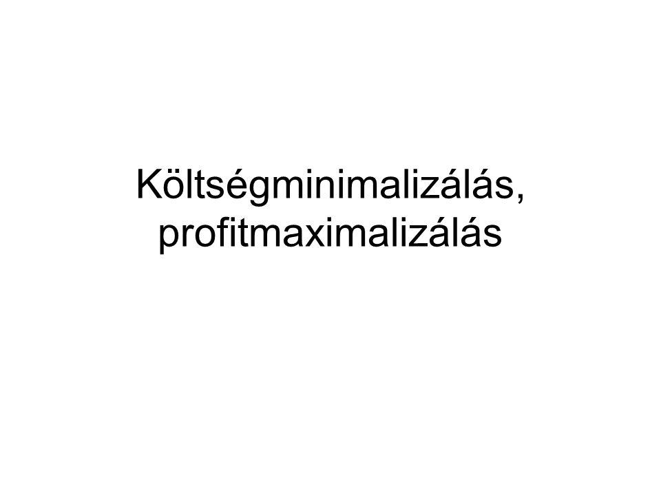 Profit A vállalat n- féle terméket termel m fajta inputot használ fel Az iputok ára: w i, adott inputból felhasznált mennyiség: x i A termékek ára: p i A profit: BevételKöltség