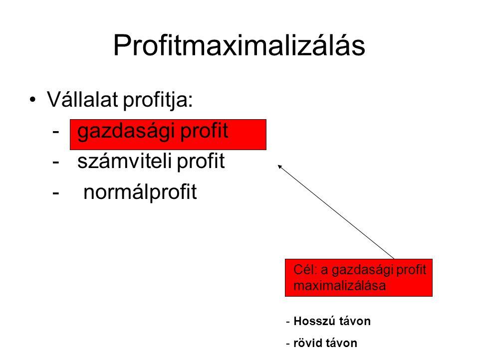 Korlátozó tényezők Idő - időtávok Technológia – termelési függvény Költség – költségfüggvények Piaci - mennyit és milyen áron.