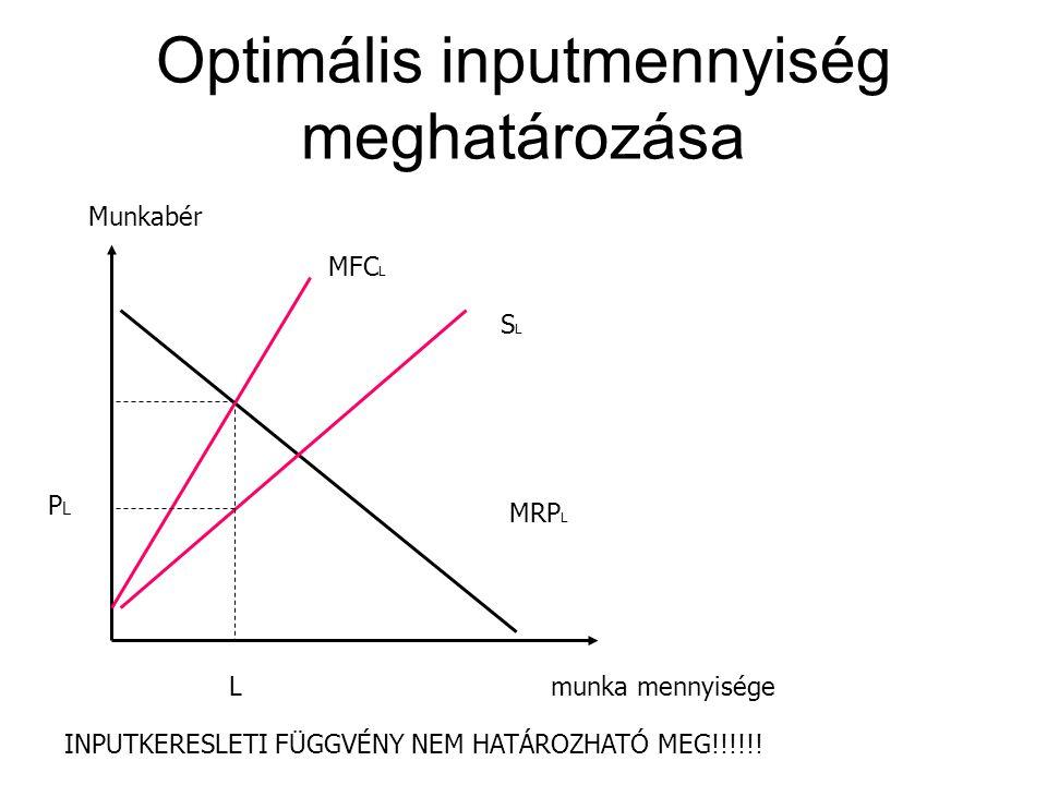 Optimális inputmennyiség meghatározása L munka mennyisége Munkabér MRP L SLSL MFC L PLPL INPUTKERESLETI FÜGGVÉNY NEM HATÁROZHATÓ MEG!!!!!!