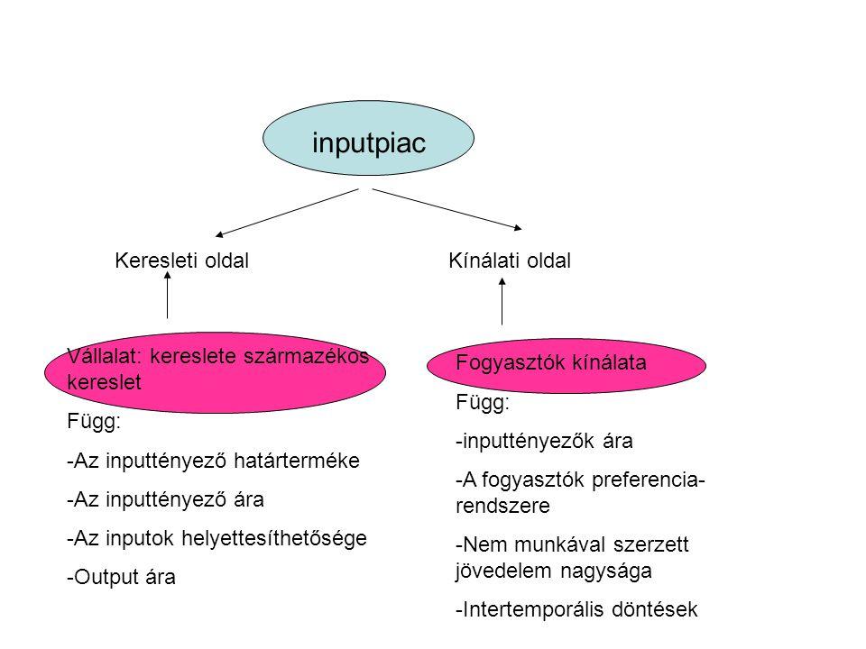 inputpiac Keresleti oldalKínálati oldal Vállalat: kereslete származékos kereslet Függ: -Az inputtényező határterméke -Az inputtényező ára -Az inputok