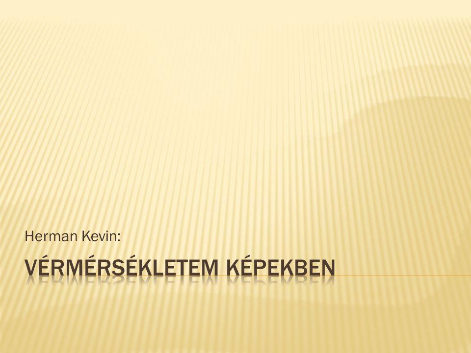 Herman Kevin: