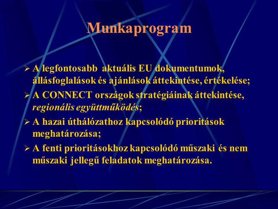 Munkaprogram  A legfontosabb aktuális EU dokumentumok, állásfoglalások és ajánlások áttekintése, értékelése;  A CONNECT országok stratégiáinak áttekintése, regionális együttműködés;  A hazai úthálózathoz kapcsolódó prioritások meghatározása;  A fenti prioritásokhoz kapcsolódó műszaki és nem műszaki jellegű feladatok meghatározása.
