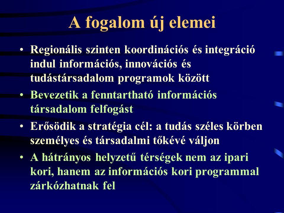 A fogalom új elemei Regionális szinten koordinációs és integráció indul információs, innovációs és tudástársadalom programok között Bevezetik a fenntartható információs társadalom felfogást Erősödik a stratégia cél: a tudás széles körben személyes és társadalmi tőkévé váljon A hátrányos helyzetű térségek nem az ipari kori, hanem az információs kori programmal zárkózhatnak fel