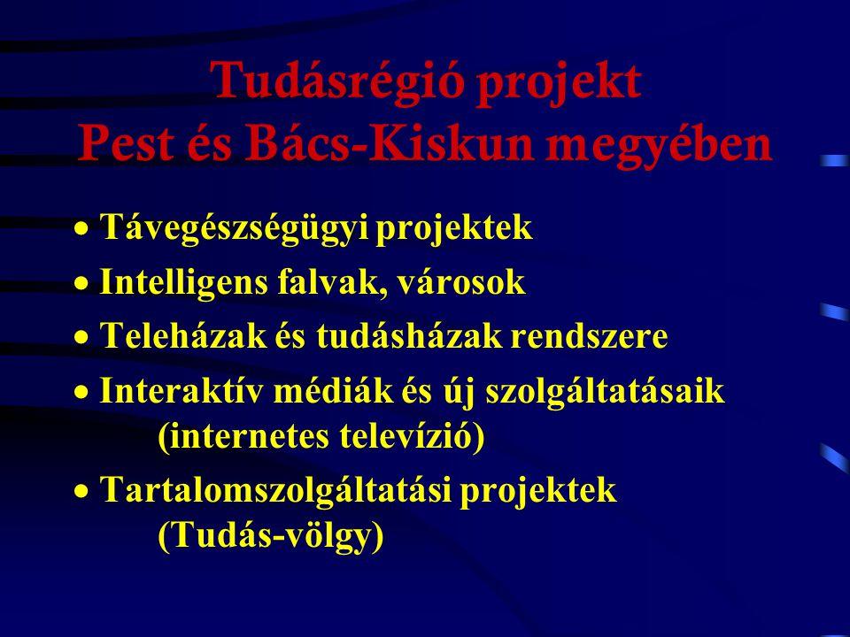 Tudásrégió projekt Pest és Bács-Kiskun megyében  Szélessávú, interaktív hálózat építése, működtetése  Digitális önkormányzás, elektronikus közigazgatás  Tudásalapú gazdaság, technológiafejlesztési övezetek  Távoktatási központok, virtuális egyetemek