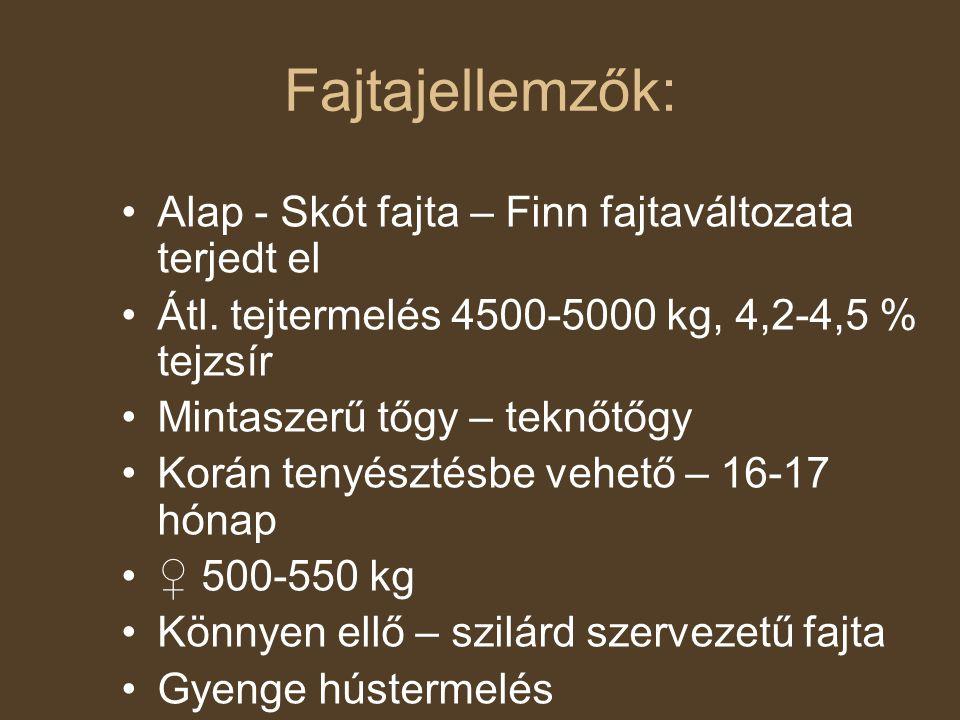 Fajtajellemzők: Alap - Skót fajta – Finn fajtaváltozata terjedt el Átl. tejtermelés 4500-5000 kg, 4,2-4,5 % tejzsír Mintaszerű tőgy – teknőtőgy Korán