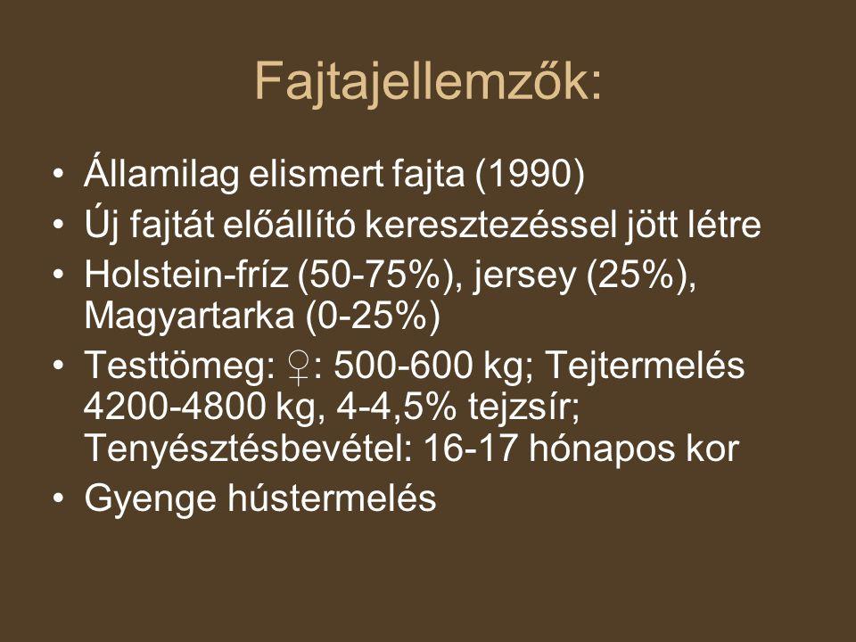 Fajtajellemzők: Államilag elismert fajta (1990) Új fajtát előállító keresztezéssel jött létre Holstein-fríz (50-75%), jersey (25%), Magyartarka (0-25%