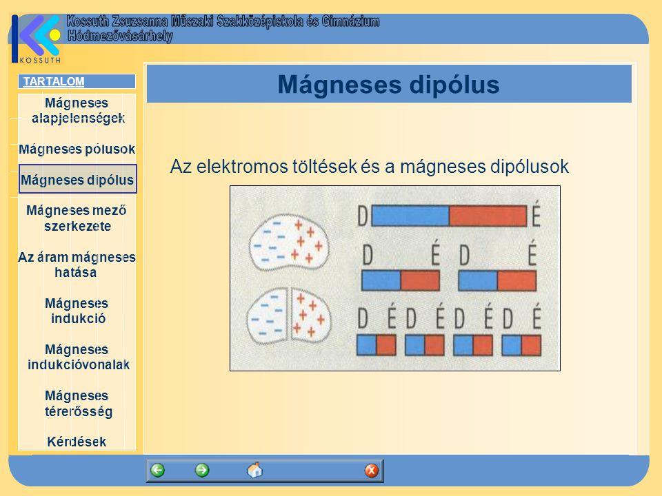 Mágneses alapjelenségek Mágneses pólusok Mágneses dipólus Mágneses mező szerkezete Az áram mágneses hatása Mágneses indukció Mágneses indukcióvonalak
