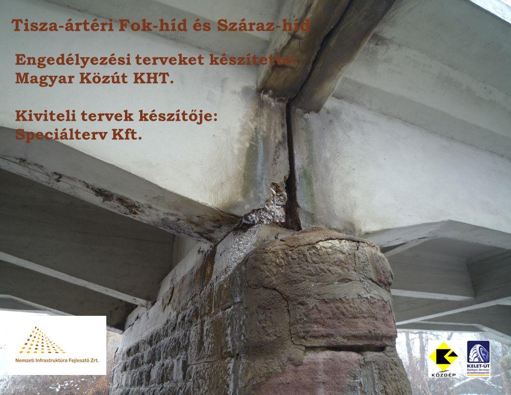 Tisza-ártéri Fok-híd és Száraz-híd Engedélyezési terveket készítette: Magyar Közút KHT.