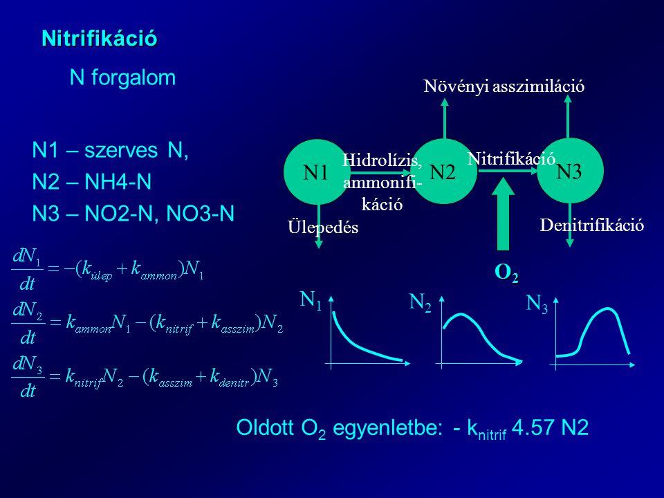 Nitrifikáció N forgalom N1 N2 N3 Ülepedés Denitrifikáció Növényi asszimiláció Hidrolízis, ammonifi- káció Nitrifikáció O2O2O2O2 N1 – szerves N, N2 – NH4-N N3 – NO2-N, NO3-N N1N1 N2N2 N3N3 Oldott O 2 egyenletbe: - k nitrif 4.57 N2