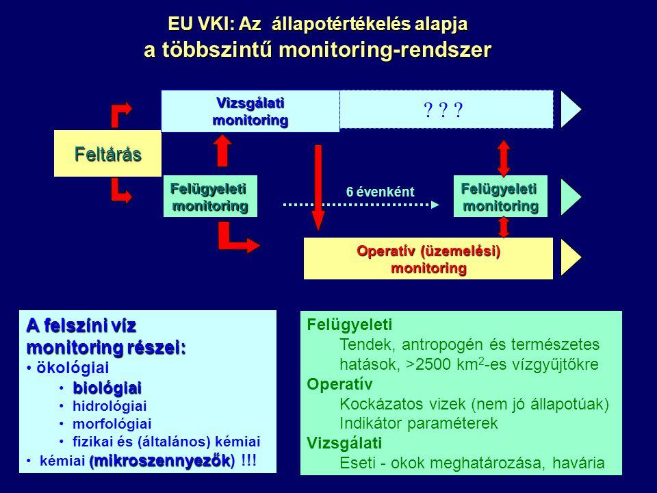 EU VKI: Az állapotértékelés alapja a többszintű monitoring-rendszer Feltárás Vizsgálati monitoring .