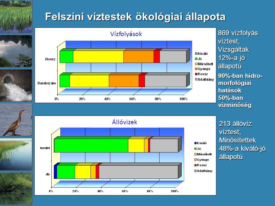 Felszíni víztestek ökológiai állapota 869 vízfolyás víztest, Vizsgáltak 12%-a jó állapotú 213 állóvíz víztest, Minősítettek 48%-a kiváló-jó állapotú 90%-ban hidro- morfológiai hatások 50%-ban vízminőség Vízfolyások Állóvizek