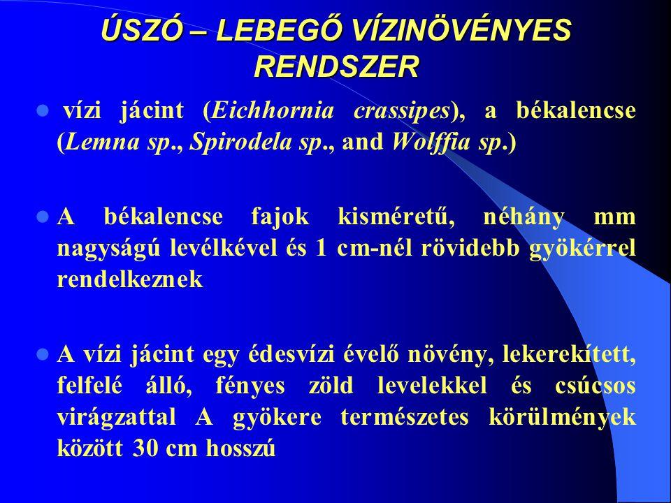 ÚSZÓ – LEBEGŐ VÍZINÖVÉNYES RENDSZER vízi jácint (Eichhornia crassipes), a békalencse (Lemna sp., Spirodela sp., and Wolffia sp.) A békalencse fajok ki