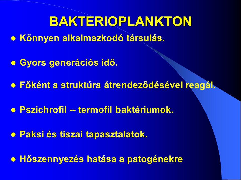 BAKTERIOPLANKTON Könnyen alkalmazkodó társulás. Gyors generációs idő. Főként a struktúra átrendeződésével reagál. Pszichrofil -- termofil baktériumok.