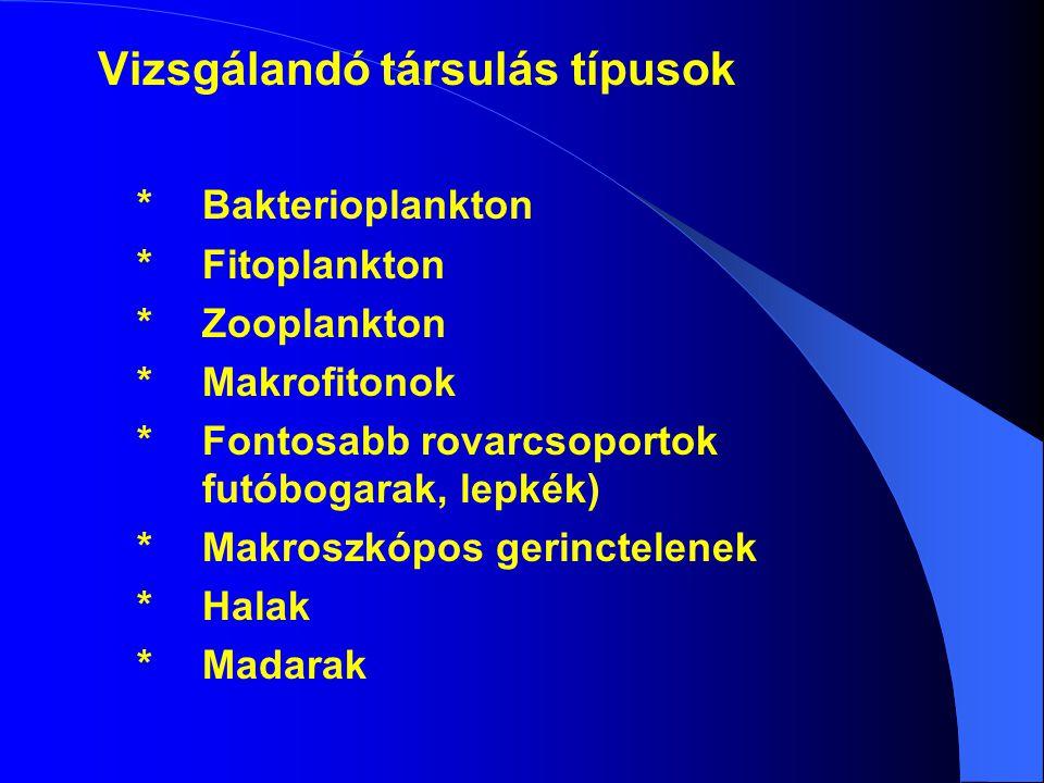 Vizsgálandó társulás típusok * Bakterioplankton * Fitoplankton * Zooplankton * Makrofitonok * Fontosabb rovarcsoportok futóbogarak, lepkék) * Makroszk