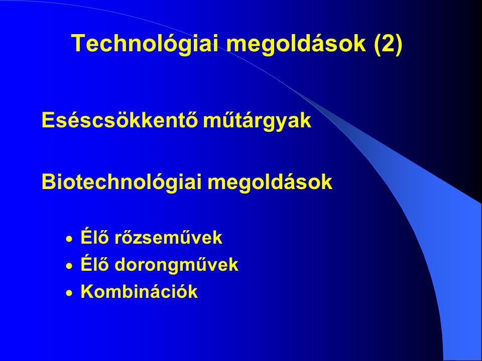 Technológiai megoldások (2) Eséscsökkentő műtárgyak Biotechnológiai megoldások  Élő rőzseművek  Élő dorongművek  Kombinációk